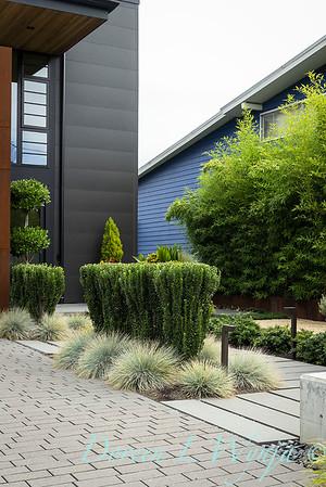 Robin Parsons garden designer - West Seattle project_2525