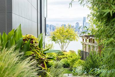 Robin Parsons garden designer - West Seattle project_2536