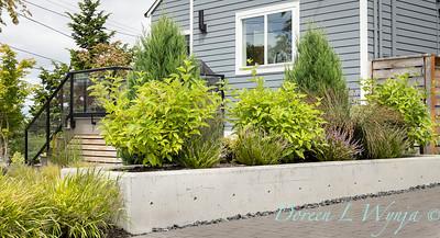 Robin Parsons garden designer - West Seattle project_2507