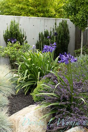Robin Parsons garden designer - West Seattle project_2520