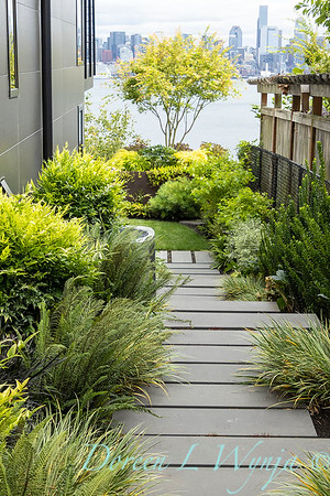 Robin Parsons garden designer - West Seattle project_2540