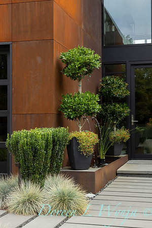 Robin Parsons garden designer - West Seattle project_2524