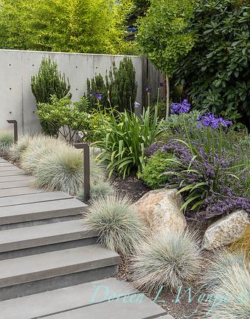 Robin Parsons garden designer - West Seattle project_2519