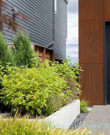 Robin Parsons garden designer - West Seattle project_2508