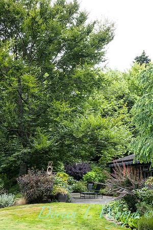 Sara's garden among the trees_126
