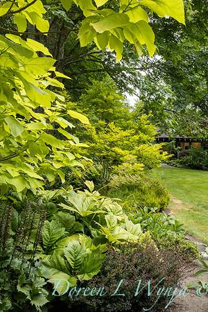 Sara's garden among the trees_145