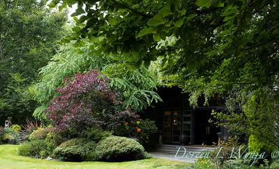 Sara's garden among the trees_122