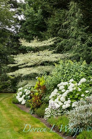 Sara's garden among the trees_157