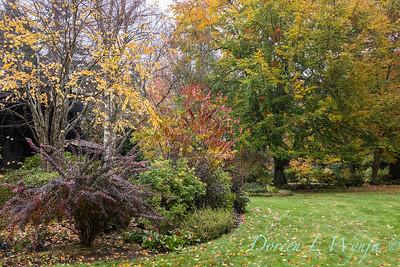 Sara's fall garden_225