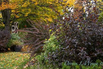 Sara's fall garden_238