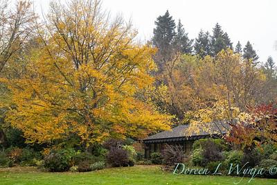 Sara's fall garden_237