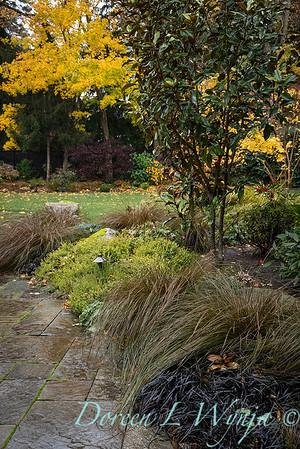 Sara's fall garden_203