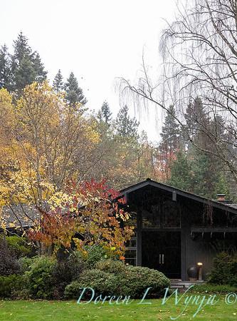 Sara's fall garden_239