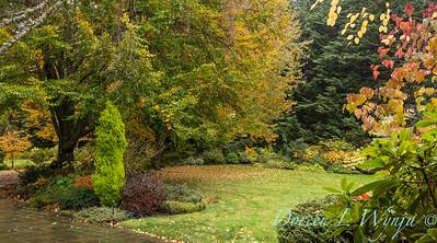 Sara's fall garden_235