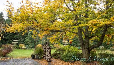 Sara's fall garden_219