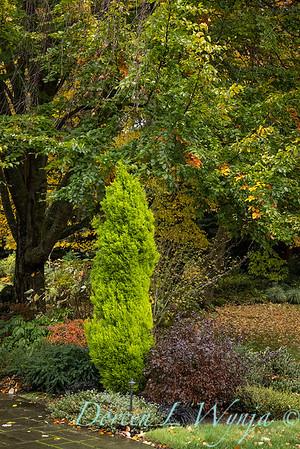 Sara's fall garden_234