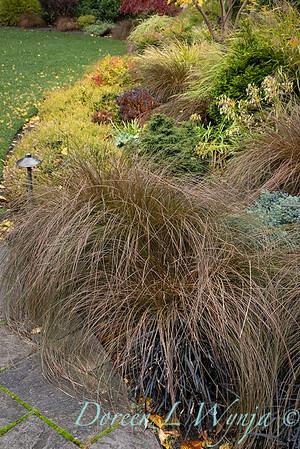 Sara's fall garden_205