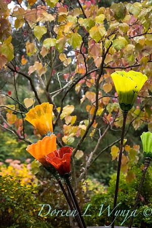 Sara's fall garden_223