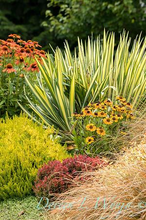 Shoreline project - Stacie Crooks garden designer_3048