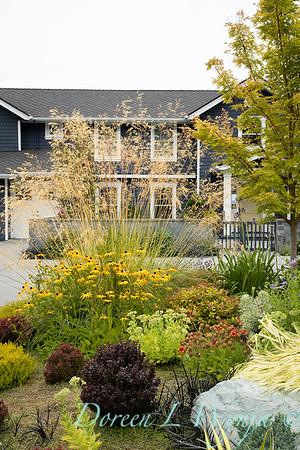 Shoreline project - Stacie Crooks garden designer_3061