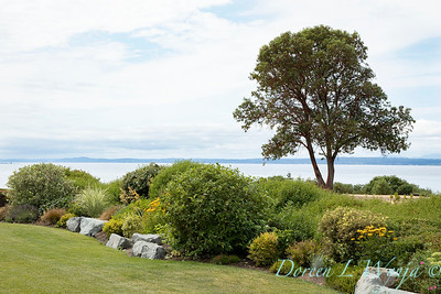 Shoreline project - Stacie Crooks garden designer_3078
