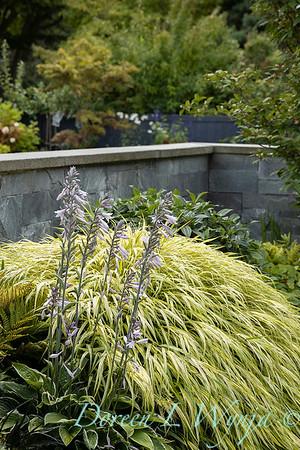 Shoreline project - Stacie Crooks garden designer_3033