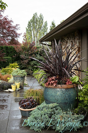 Stacie's Place_3043