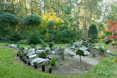 The new conifer garden mounds_6920