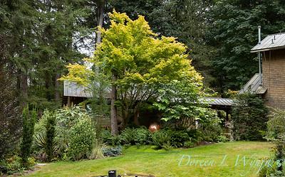 Pat & Walt garden space_324