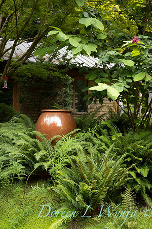 Pat & Walt garden space_323