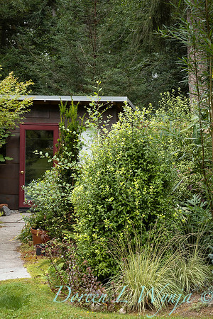 Pat & Walt garden space_316