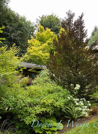 Pat & Walt garden space_313
