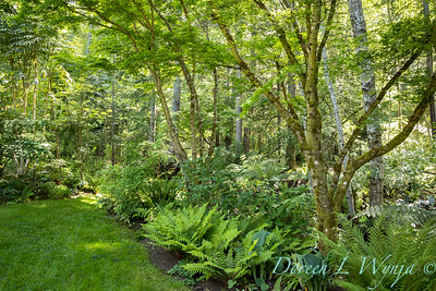 Pat & Walt's garden with stumpery_133