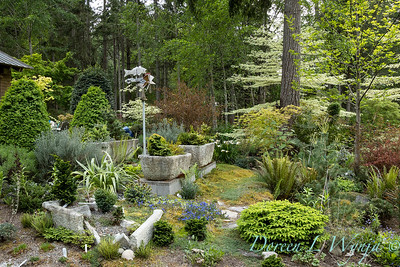 Pat & Walt's garden with stumpery_125