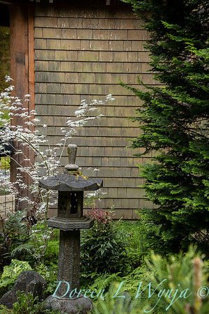 Pat & Walt's garden with stumpery_118