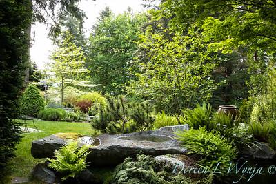 Pat & Walt's garden with stumpery_121