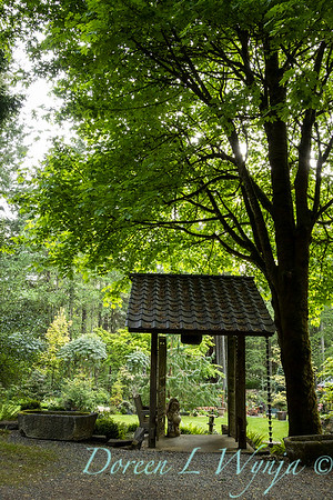 Pat & Walt's garden with stumpery_101
