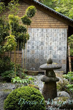 Pat & Walt's garden with stumpery_115