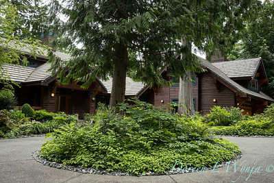 Log Cabin on Bainbridge_100