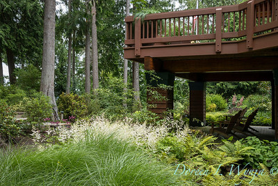 Log Cabin on Bainbridge_130