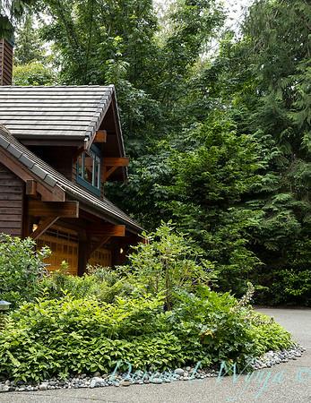 Log Cabin on Bainbridge_105