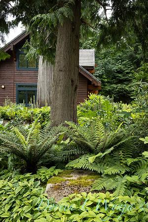 Log Cabin on Bainbridge_116