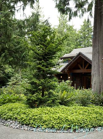 Log Cabin on Bainbridge_104