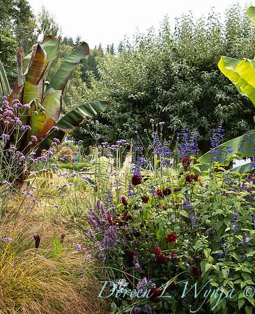 Susan Calhoun - her presonal garden_2579