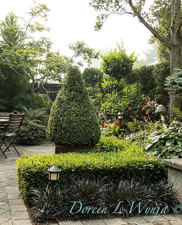 Tanya's garden_174