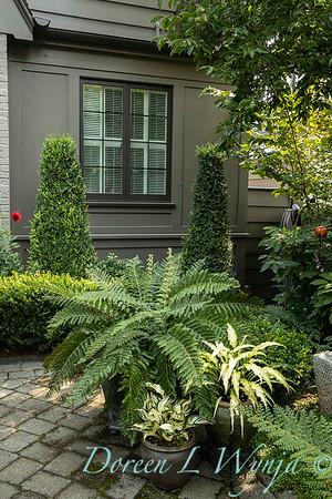 Tanya's garden_154