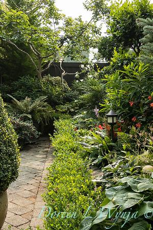Tanya's garden_197