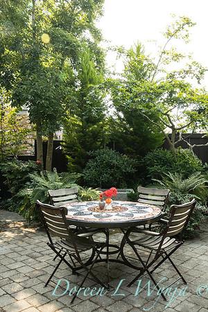 Tanya's garden_152
