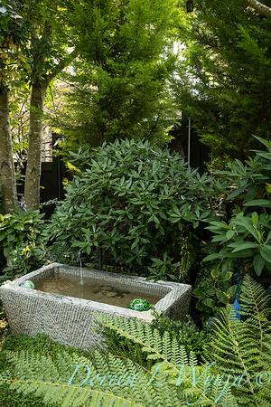 Tanya's garden_156