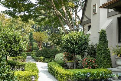 Tanya's garden_157